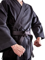 Active Cyber Defense the Jiu Jitsu of Cybersecurity